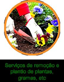 Plantivida Serviços Remoção e Plantio
